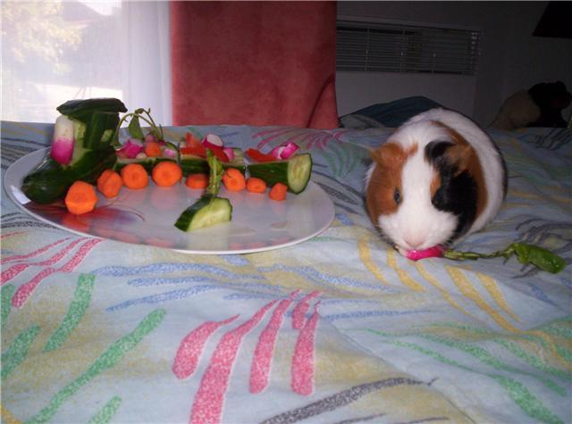 Globule train de legumes
